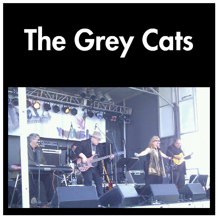 The Grey Cats - default icon