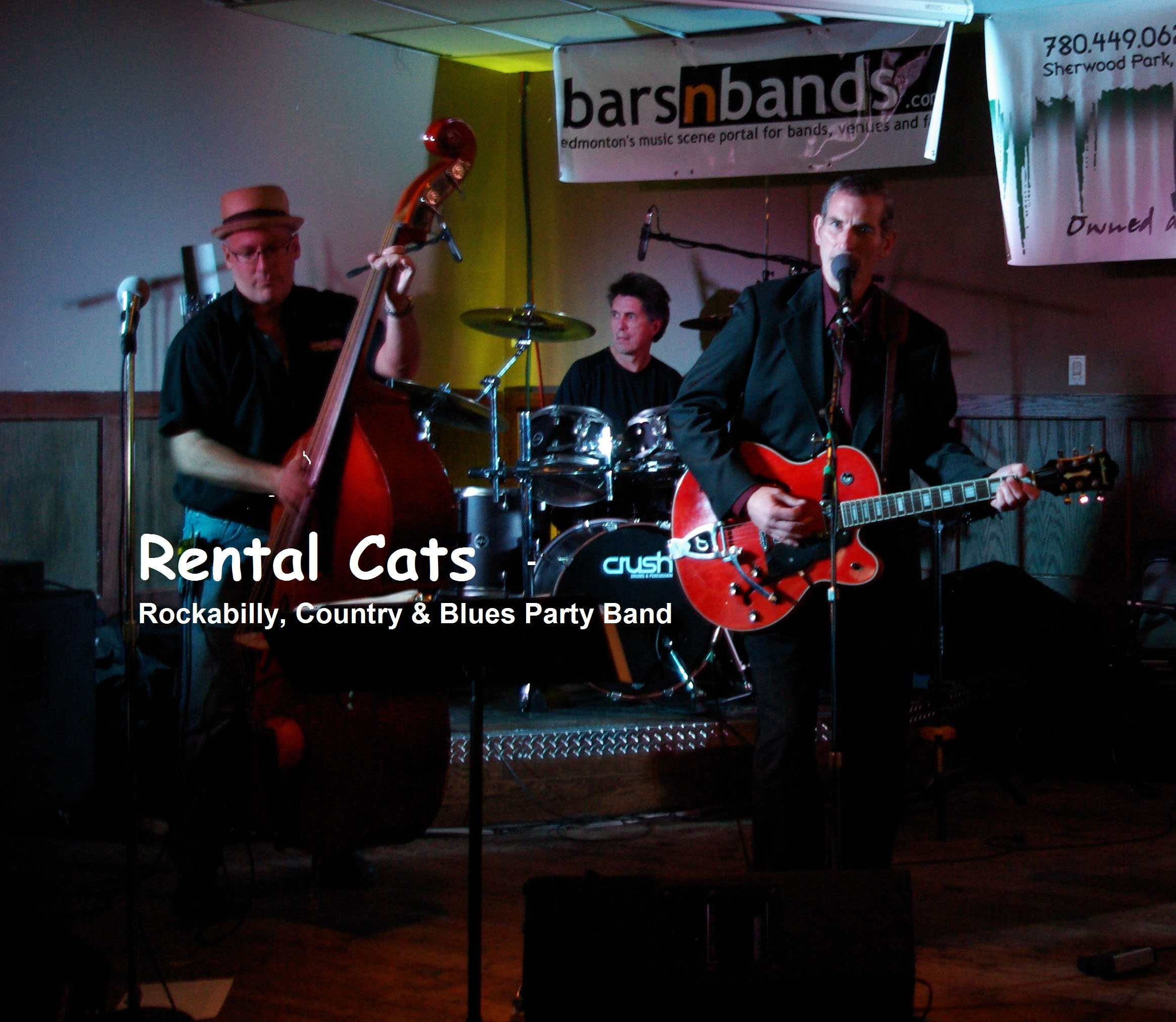 Rental Cats - default icon
